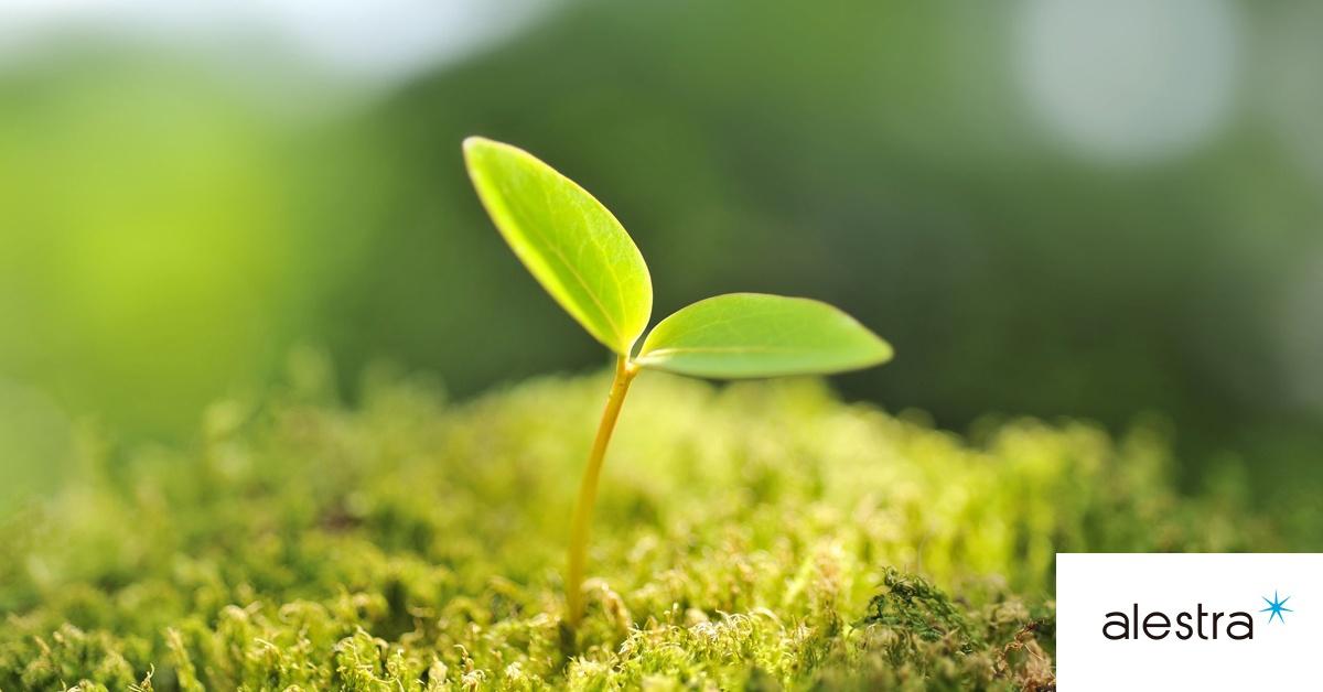 9-dia-mundial-del-medio-ambiente.jpeg